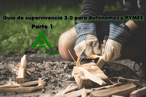 Guía de supervivencia 2.0 para Autónomos y PYMES   Parte 1
