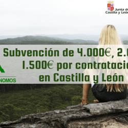 Subvención en Castilla y león