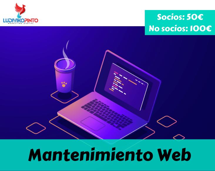 Mantenimiento Web Ludiviko Pinto