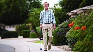 Subsidio para mayores de 55 años autónomos